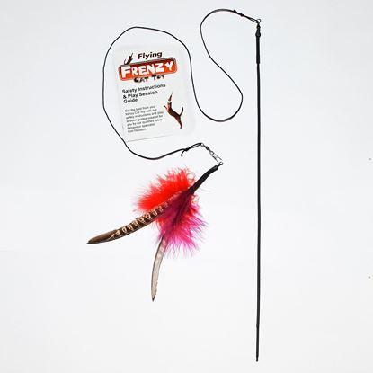 """Picture of Flying Frenzy - 19"""" Rod Toy"""